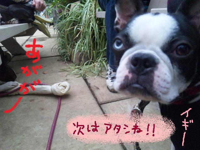 舎人でランチ&ランツアー★ランチ編_d0187891_1749923.jpg