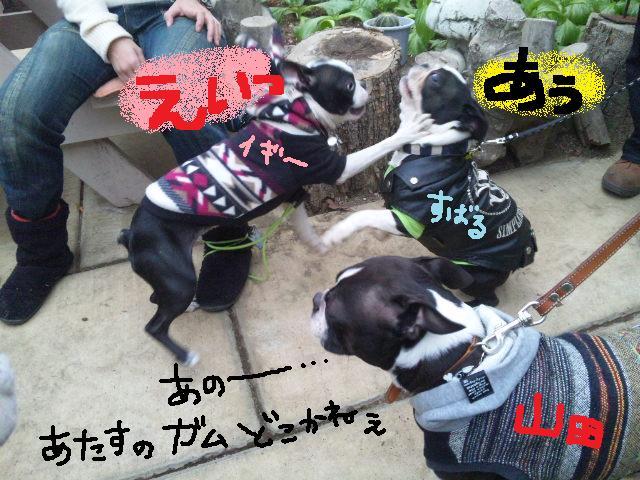 舎人でランチ&ランツアー★ランチ編_d0187891_17511498.jpg