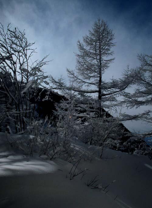 雪降りの後_e0120896_10321479.jpg