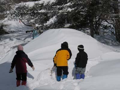 雪降りの後_e0120896_10325027.jpg