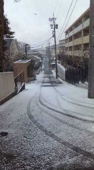 雪の名古屋。。。そして タイ王国のNabeさん_b0206197_14465521.jpg