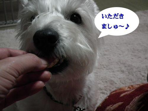 コタツとみかん♪_a0161111_14253477.jpg