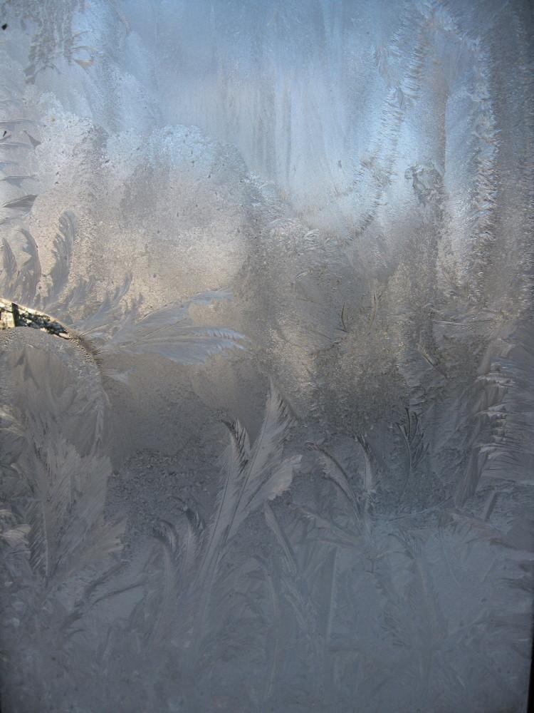 寒さばくはーつ_c0218213_15441865.jpg
