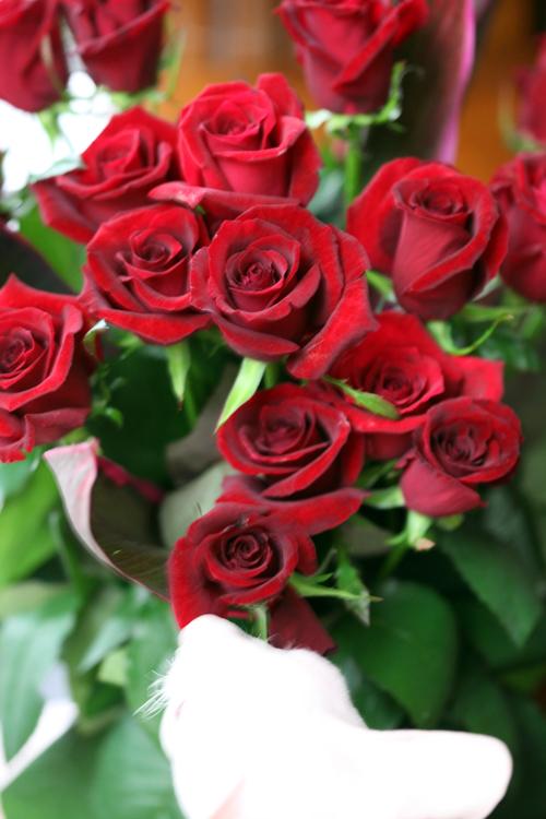 20年分の薔薇・・・_e0048332_0182131.jpg
