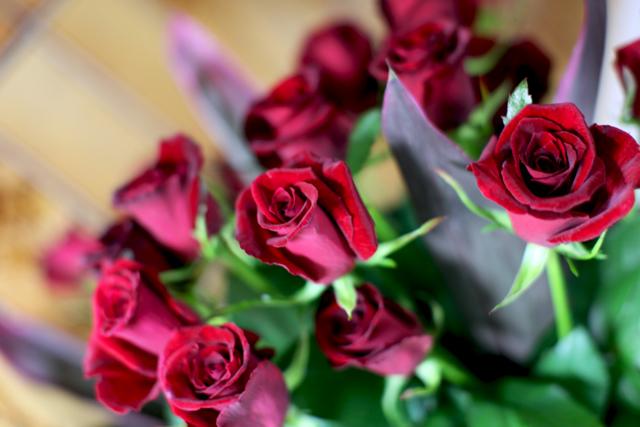 20年分の薔薇・・・_e0048332_0183146.jpg