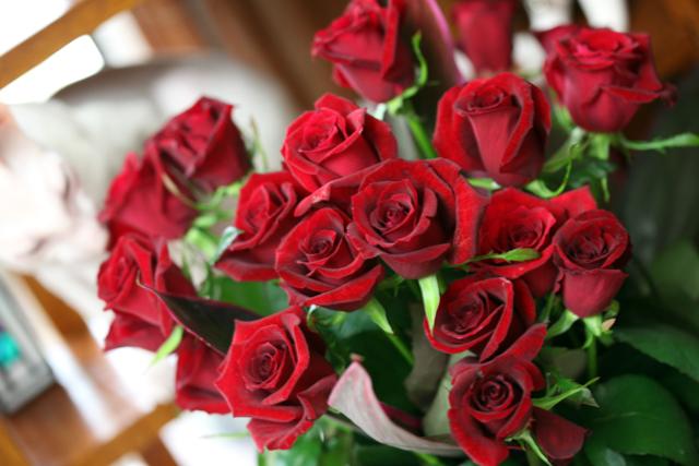 20年分の薔薇・・・_e0048332_0183590.jpg