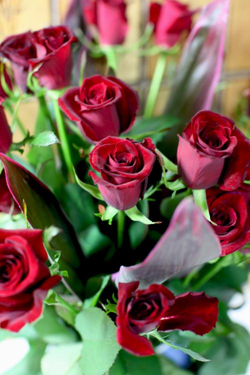20年分の薔薇・・・_e0048332_018387.jpg