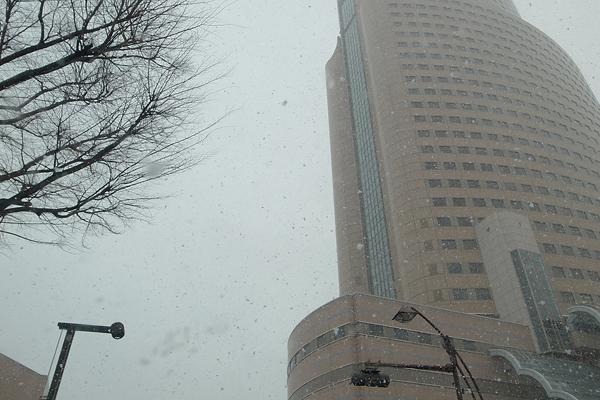 SNOW_e0131432_8422073.jpg