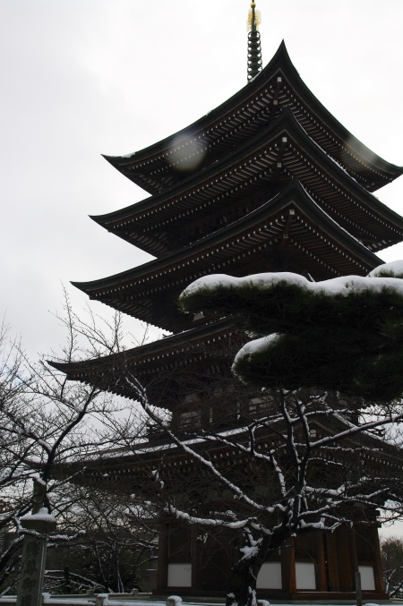 雪の日泰寺_d0145934_1351520.jpg