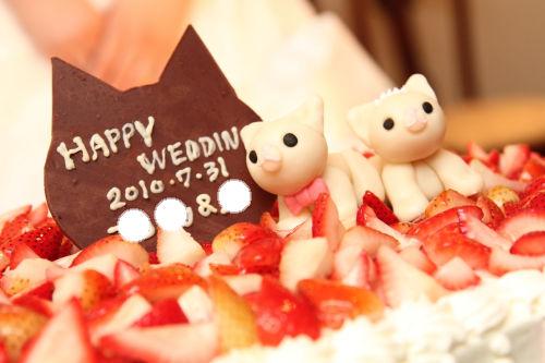 猫ウェディングまとめ☆_f0108346_13344497.jpg