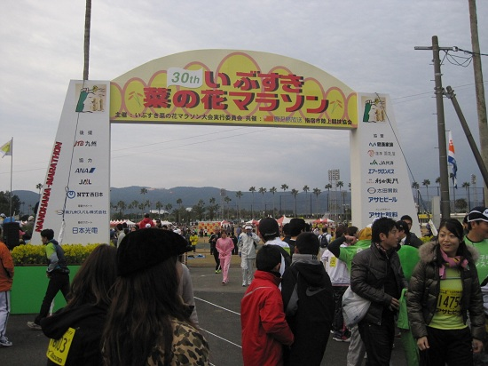 菜の花マラソン in指宿♪_a0079474_2305265.jpg