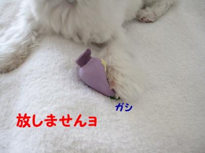 b0193480_1224076.jpg