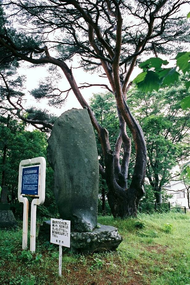 函館の碑をめぐる旅(予告編)_a0158797_23541597.jpg