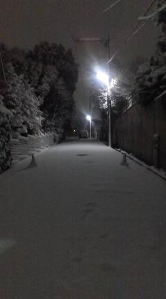 雪の名古屋 2_b0206197_0595444.jpg