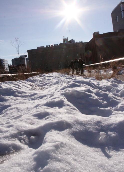 ニューヨークの空中公園、ハイラインも雪景色_b0007805_0282815.jpg