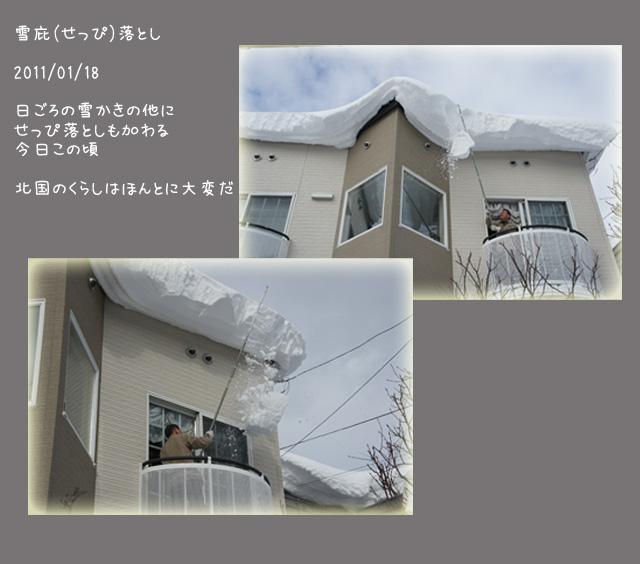 b0019313_17255618.jpg
