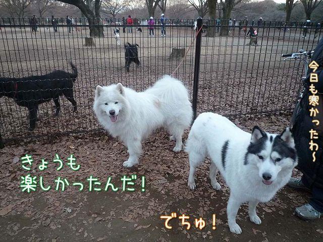 日曜日のおっきな公園_c0062832_15273236.jpg