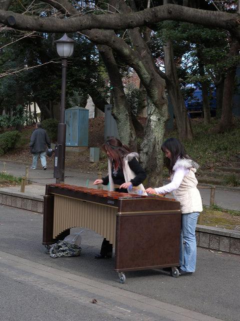 上野公園でマリンバデュオ_e0089232_2142298.jpg