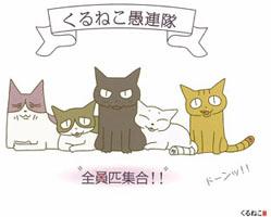 アニメ『くるねこ』、北海道に続きテレビ静岡でも放送決定!だよ~ぉ♪_e0025035_18532615.jpg