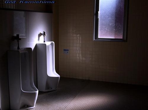 トイレの神様_f0079943_1427660.jpg