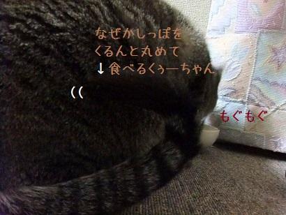 b0118850_2094487.jpg