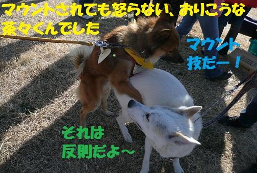 f0121712_1445884.jpg