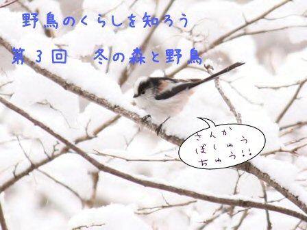 b0189727_1239062.jpg