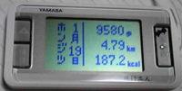 f0065954_2020098.jpg
