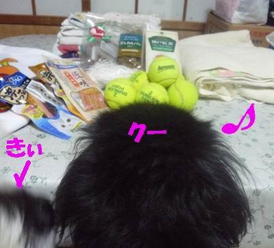 b0140680_7165645.jpg