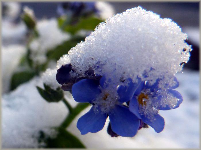 冷たい朝_b0093088_8454486.jpg