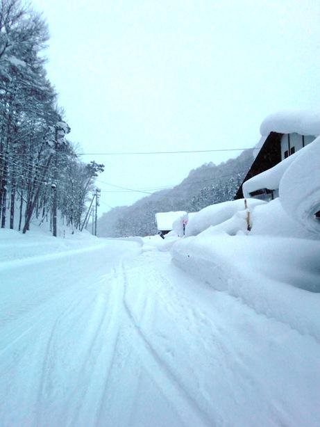 雪やこんこん_f0227395_16563167.jpg