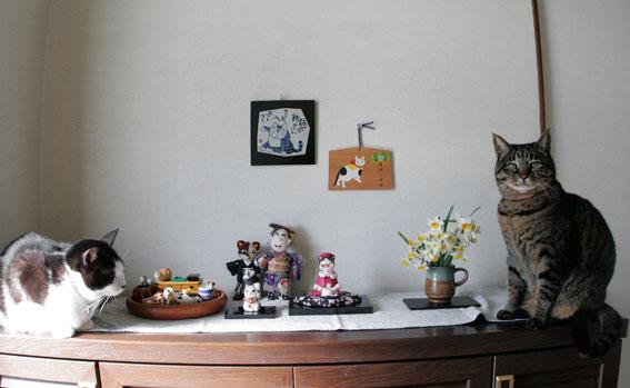 玄関は福猫だら毛_d0071596_13124275.jpg
