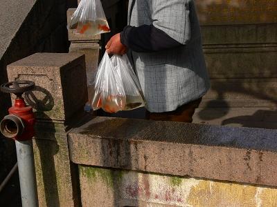 中国出張2010年12月-週末旅行-第一日目-朱家角鎮(I) チケット、放生橋、阿婆茶楼、東・西井街_c0153302_1656838.jpg