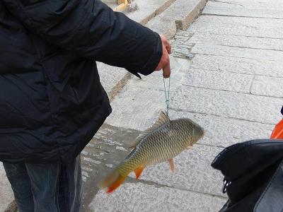 中国出張2010年12月-週末旅行-第一日目-朱家角鎮(I) チケット、放生橋、阿婆茶楼、東・西井街_c0153302_17111535.jpg
