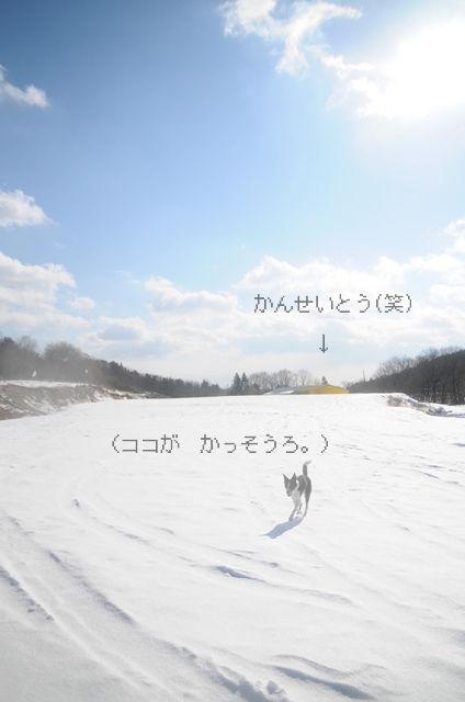 b0119620_10344678.jpg