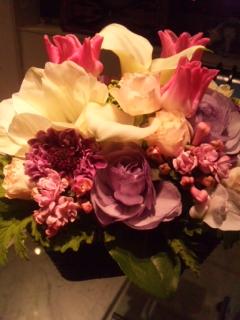1月誕生花・・・の花ことばは・・・_d0148223_2247663.jpg