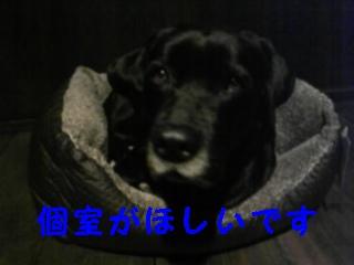 f0148927_22481030.jpg