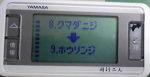 f0065954_204974.jpg