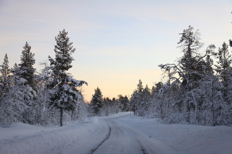 北極圏の雪景色_c0187779_5121665.jpg