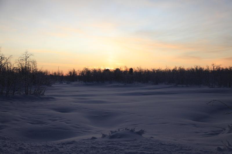 北極圏の雪景色_c0187779_544948.jpg