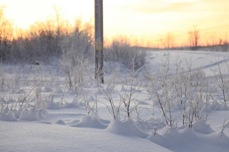 北極圏の雪景色_c0187779_595513.jpg