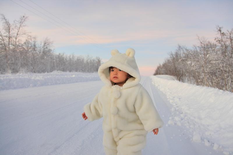 北極圏の雪景色_c0187779_8111945.jpg