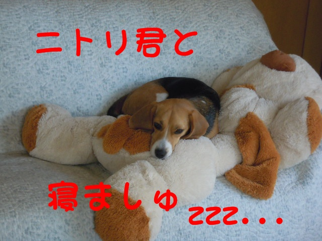 c0166622_10232837.jpg