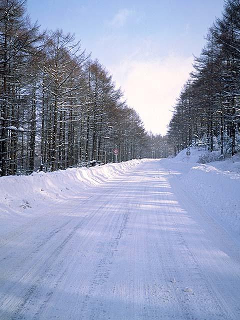 雪道_e0159249_16362414.jpg