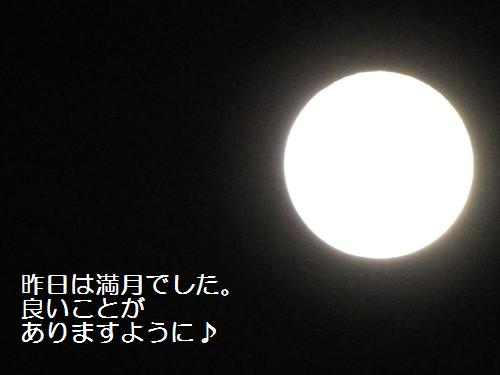 c0108366_16571738.jpg