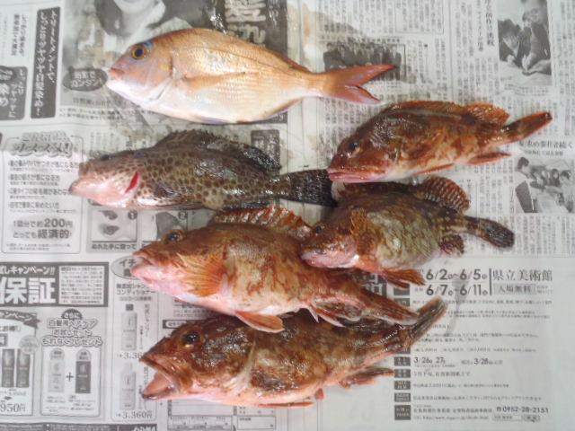 久しぶりのお魚ちゃん_a0077071_1884781.jpg