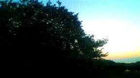 桜と・・・_d0189675_8171148.jpg