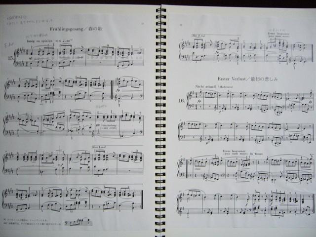 シューマンを弾きたい_f0079085_22504076.jpg