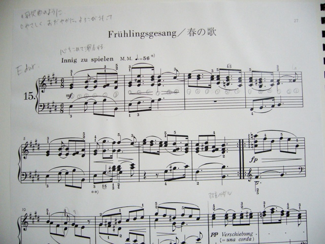 シューマンを弾きたい_f0079085_2251367.jpg