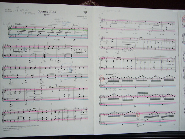 シューマンを弾きたい_f0079085_2335328.jpg